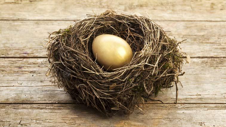 retirement-nest-egg-retire-happily
